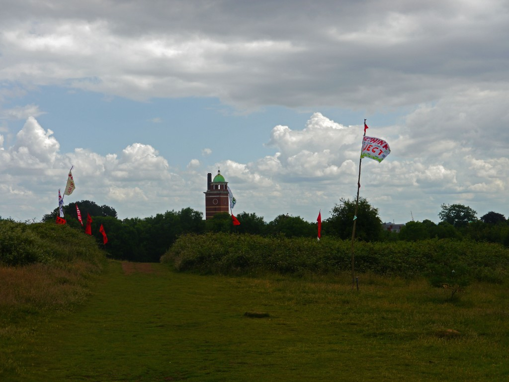 Northern Meadow, Whitchurch, Cardiff. Homemade flags in the meadow, which say Rethink and Reject. Save the northern meadow. Whitchurch Hospital can be seen in the background